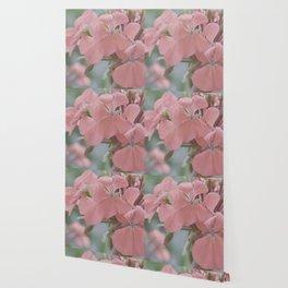 Zonal Pelargonium Neon Pink Wallpaper