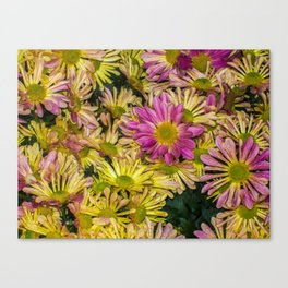 Messed Up Flowers Canvas Print