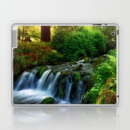 Fairytale forest fantasy Laptop & iPad Skin