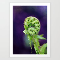 fern Art Prints featuring Fern by LoRo  Art & Pictures