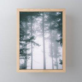 Moody Forest II Framed Mini Art Print