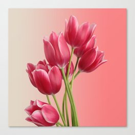 Beautiful Pink Tulips & Soft Background Canvas Print