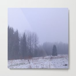 Foggy and snowy Metal Print