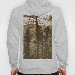 Mountain Forest New Mexico - Nature Photography Hoody