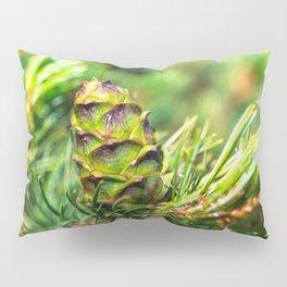 Dwarf cone Pillow Sham