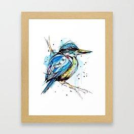 Bold Kingfisher  Framed Art Print