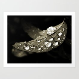 Tears drop Art Print