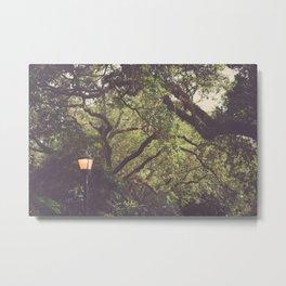 Twilight in Audubon Park New Orleans Metal Print