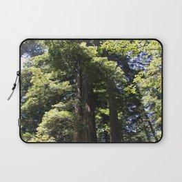 Redwood Treetops Laptop Sleeve