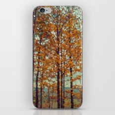 Autumn Atmosphere iPhone & iPod Skin