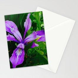 Wild Purple Iris Stationery Cards