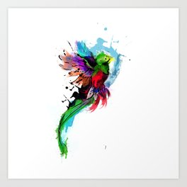 Watercolor Quetzal  Art Print