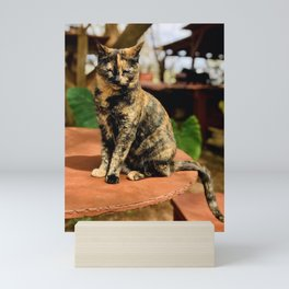 Fiery Feline (Lanai Cat Sanctuary) Mini Art Print