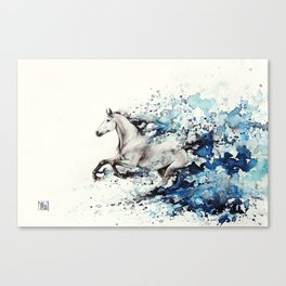 Celerity Canvas Print