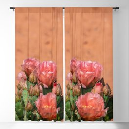 Cacti in Bloom - 5 Blackout Curtain