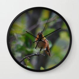 Rainbow Feathers Wall Clock