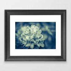 filigree - blue Framed Art Print