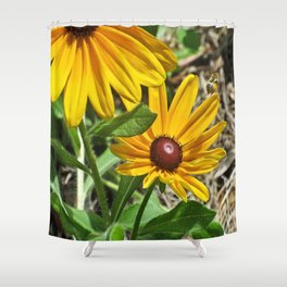Black-eyed Susans and a Busy Bee Shower Curtain