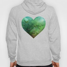"""""""The Enchanted Forest"""" (Fairyland) Hoody"""