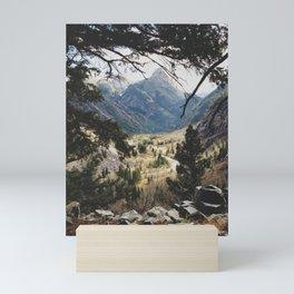 San Juan Forest Mini Art Print