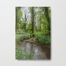 Garlic by the Stream Metal Print