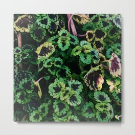 Green Leaf Flowers Metal Print