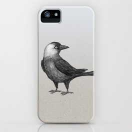 Western jackdaw pencildrawing iPhone Case
