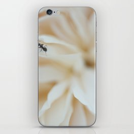 Ant iPhone Skin