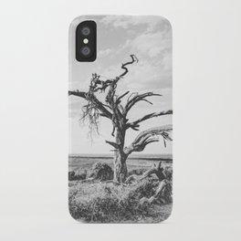 DESERT XI iPhone Case