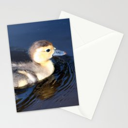 Cute Duckling Swimming in a Pond Stationery Cards