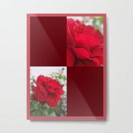 Red Rose Edges Blank Q10F0 Metal Print