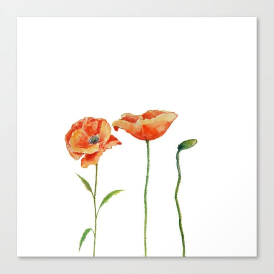 Simply poppy Vintage Watercolor illustration on white background on #Society6 Canvas Print