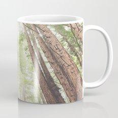 Giant Redwoods Mug