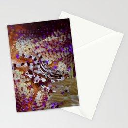Zebra crab Stationery Cards
