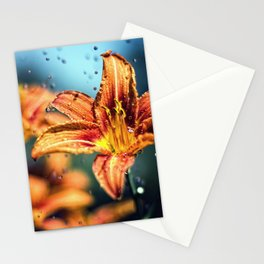 Lilien Stationery Cards