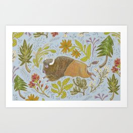 Bison in Meadow Art Print