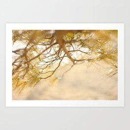 Pine Tree Love Art Print