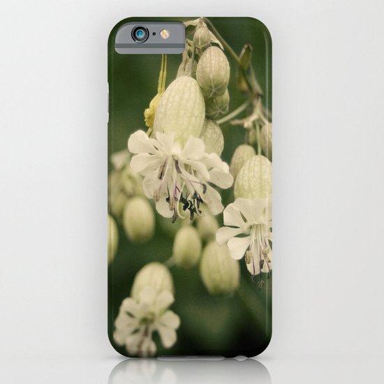 primavera iPhone & iPod Case