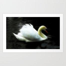 Serene Swan Art Print