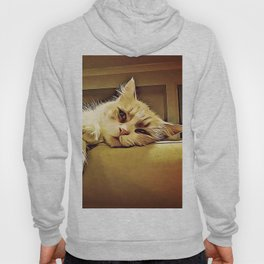 Life Is So Exhausting, I think I'll Just Have A Little Nap Hoody