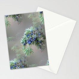 Juniper berries (seed cones) Stationery Cards