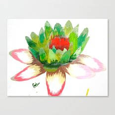 Alice's Water Lily Canvas Print