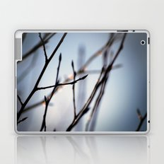 City of Aspen Laptop & iPad Skin