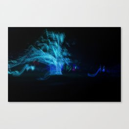 Slow Motion Canvas Print