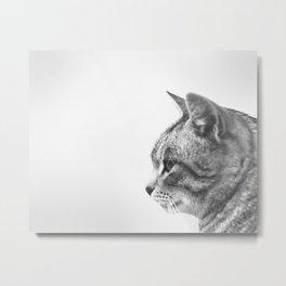 Colette the Cat Metal Print