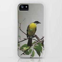 Chichen Itza Bird iPhone Case