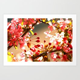 Bright Shining As The Sun Art Print