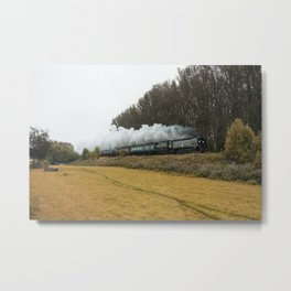 Tangmere at Whiteball  Metal Print