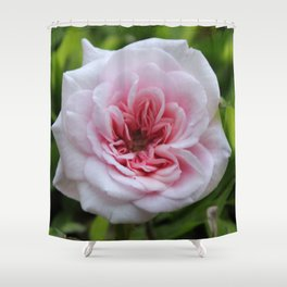 pink and sweet Shower Curtain