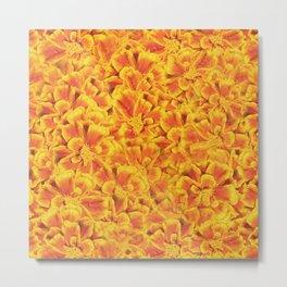 Orange Blooms Metal Print